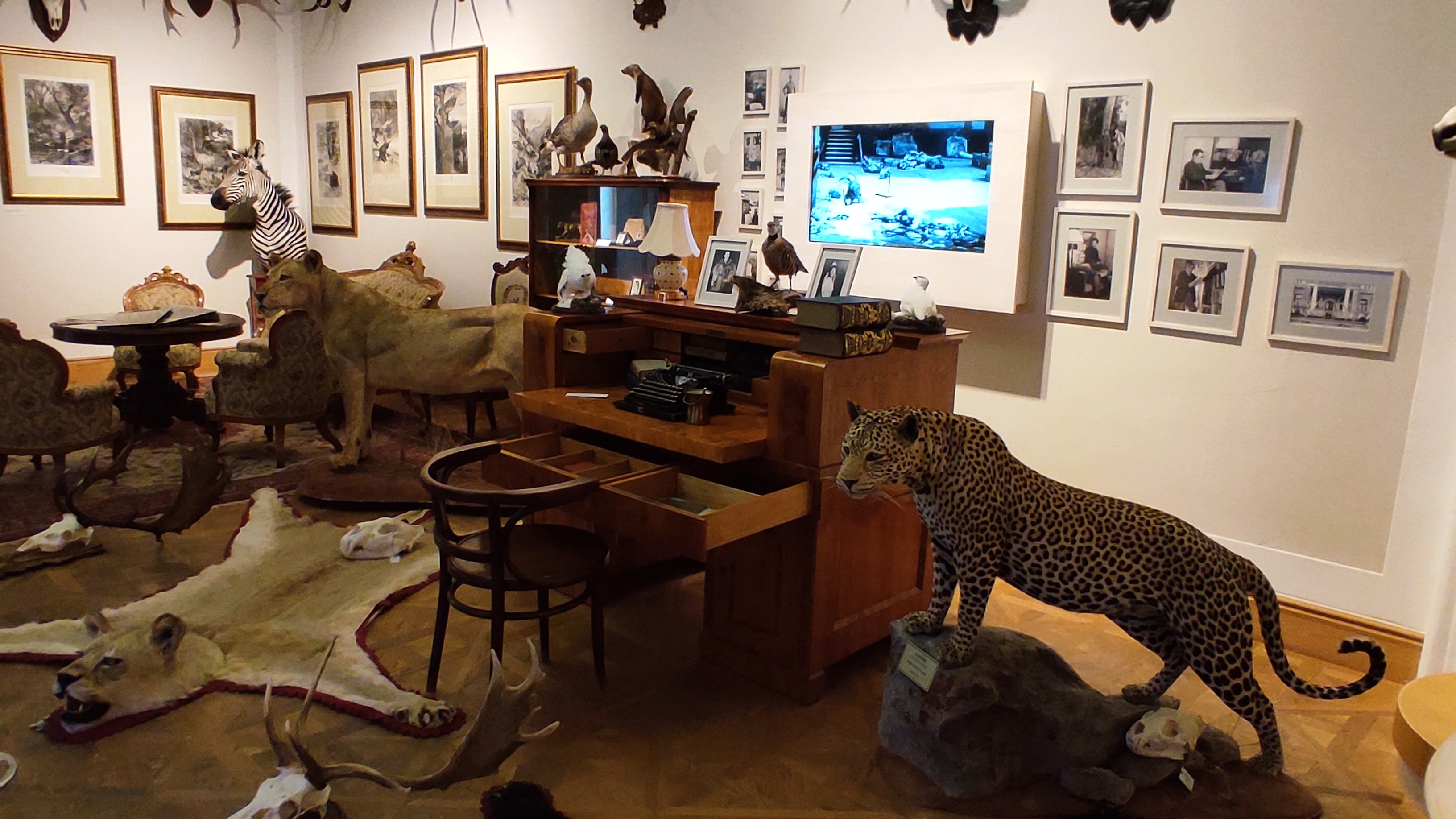 Kirandulastervezo-Hatvan-Vadaszati-Muzeum-11.jpg