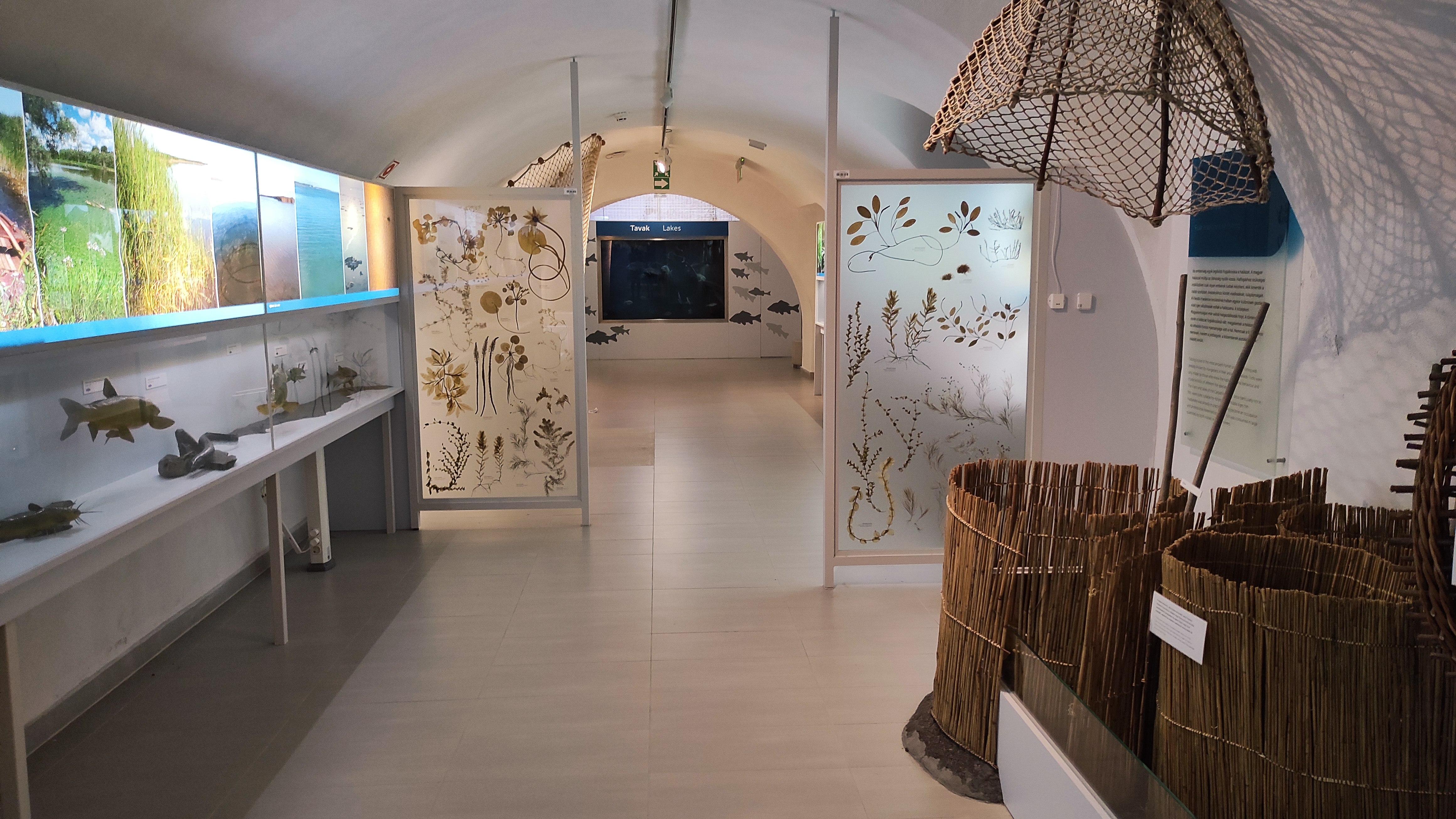 Kirandulastervezo-Hatvan-Vadaszati-Muzeum-15.jpg