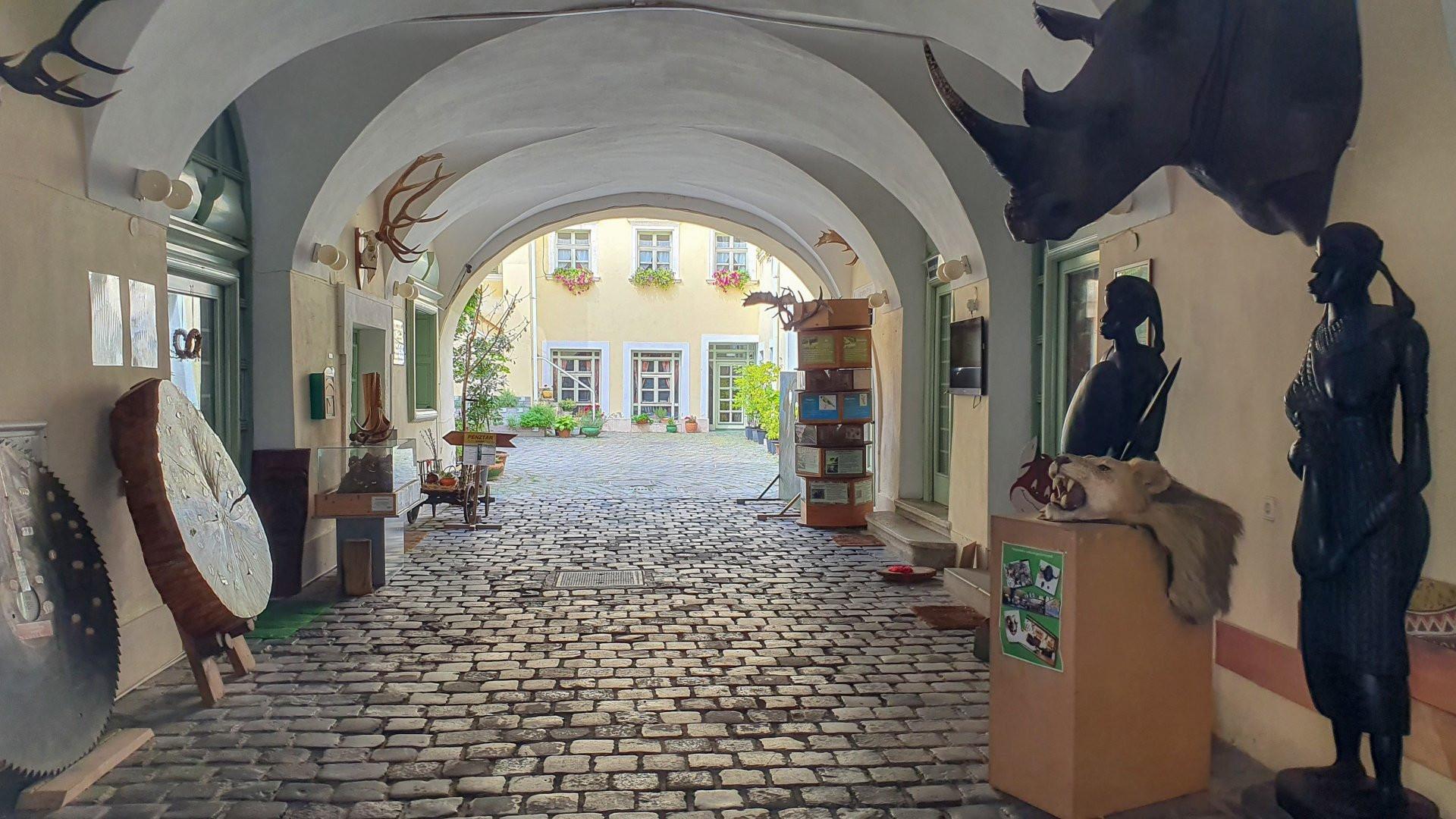 Sopron-Erdeszeti_Muzeum.jpg