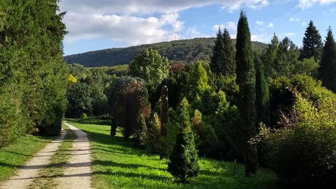 Tata_Agostyani_Arboretum_2.jpg