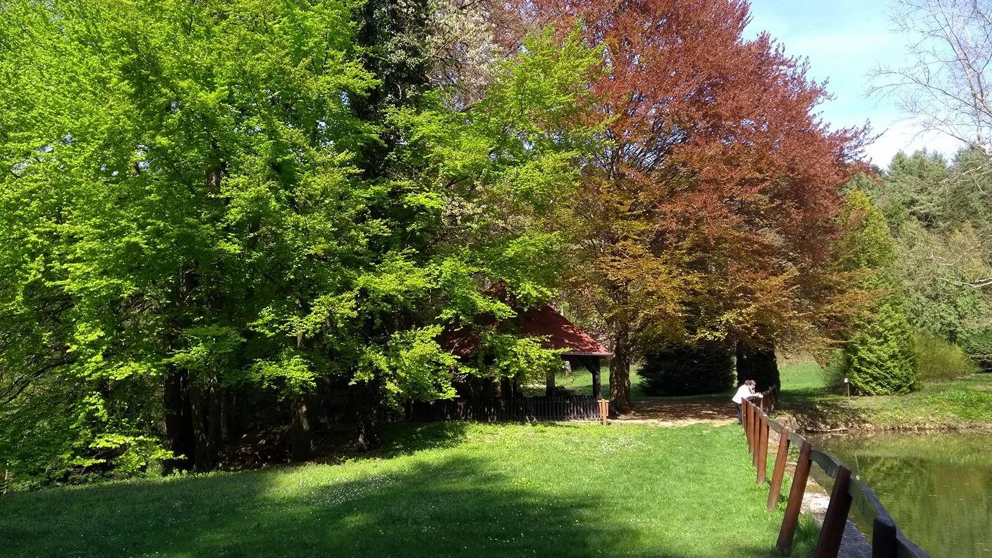 Tata_Agostyani_Arboretum_4.jpg