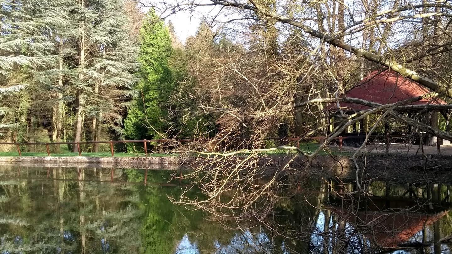 Tata_Agostyani_Arboretum_5.jpg