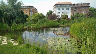Budapest_Budai_arboretum_1.jpg