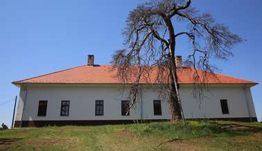 Kirandulastervezo-Pincehely-Csefalvay-kuria.jpg